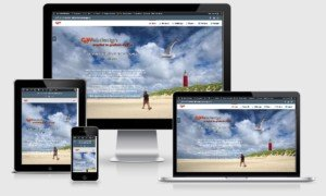 CKWebdesign, Responsive view